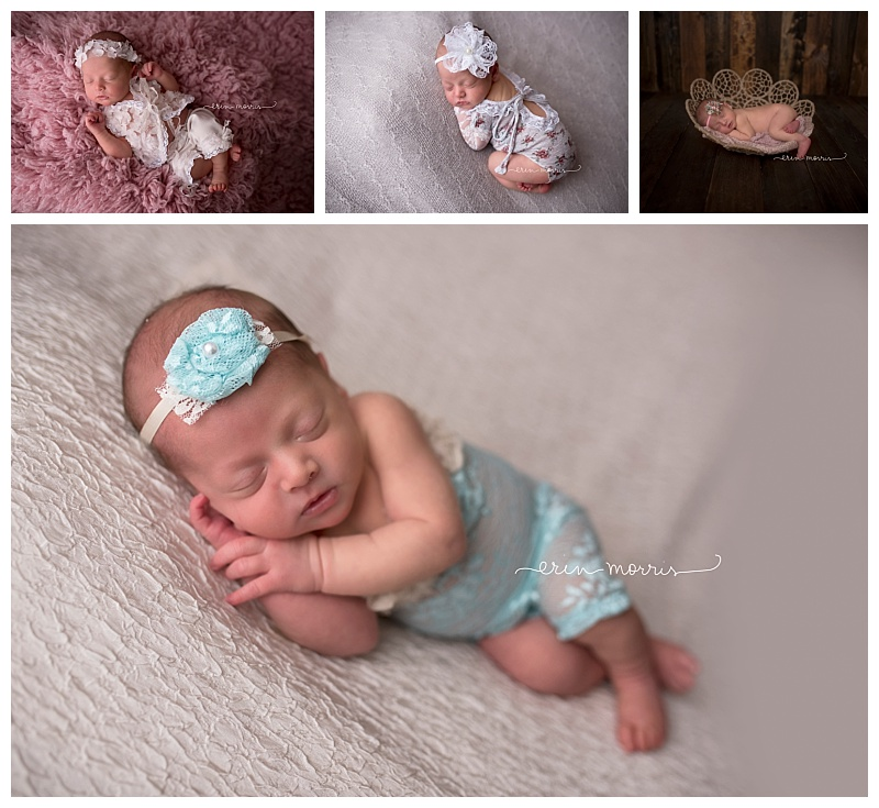 Maryland newborn photographer erin morris photography